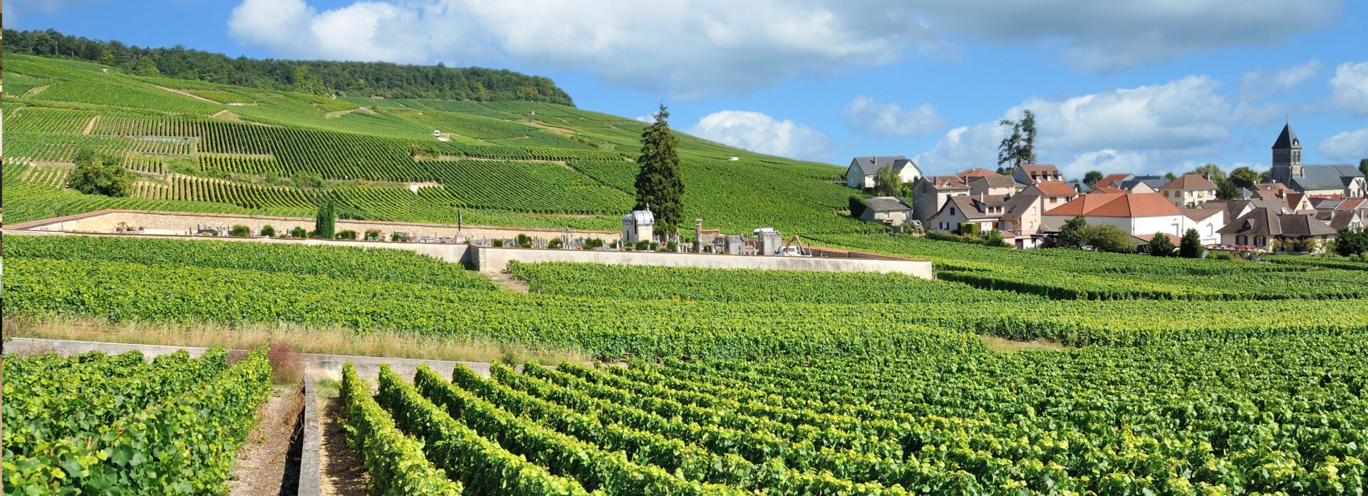 Champagne region bil Frankrike Paris reise tips guide